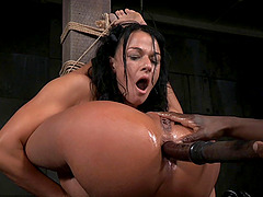 Flexible dark-haired chick penetrated with a toy in a hard BDSM play