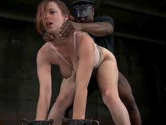 Dan jacob naked playgirl