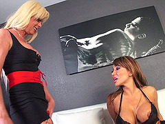 Transsexuals Ava Devine and Joanna Jet fucking hard like animals