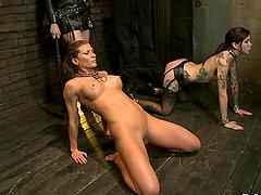 oas sex video