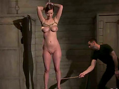 Cherry Torn gets pulled by the nipples and fucked doggy style