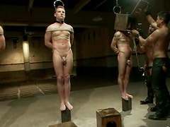 Submissive Gay Guys Jerk Off while Riding Sybians in BDSM Vid